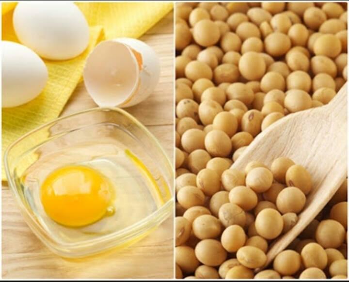เลซิติน กิฟฟารีน Giffarine Lecithin ดูแลสุขภาพตับ,กิฟฟารีน อาหารเสริม,ไขมันเกาะตับ,ไขมันพอกตับ,เลซิติน,เลซิติน กิฟฟารีน,เลซิตินคือ,อาหารเสริมเลซิติน บำรุงตับ,บำรุงสมอง,ลดไขมันในลือด,ป้องกันตับแข็ง,อาหารเสริมดูแลตับ,วิตามินบำรุงตับ