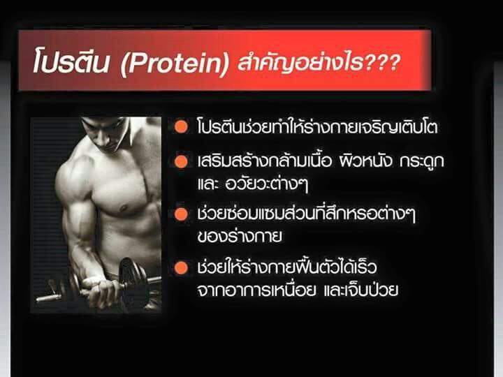 เวย์โปรตีนไอโซเลท ผสมเบต้า-แคโรทีนและคอลลาเจน, ออกกำลัง, เล่นกล้าม, เวย์โปรตีน กิฟฟารีน, โปรตีน, ไอโซเลท เวย์โปรตีน,เวย์โปรตีนไอโซเลท,เวย์โปรตีน (Whey Protein),โปรตีนเข้มข้นสูง,โปรตีนสำหรับคนอยากมีกล้าม,โปรตีนเข้มข้น กิฟฟารีน,เวย์ กิฟฟารีน,ไฮเวย์มารีนดริ๊งก์ โปรตีน,เวย์โปรตีน ไอโซเลท,ไฮเวย์มารีนดริ๊งก์,เวย์ไอโวเลท