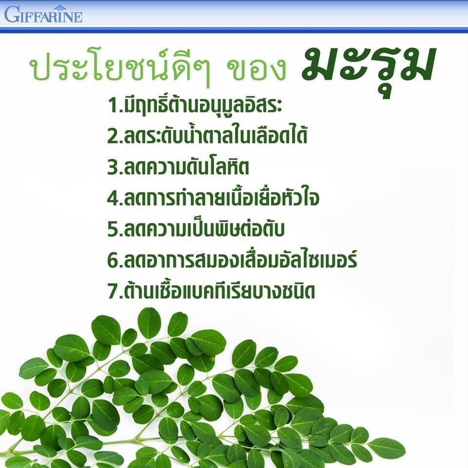 มะรุม-ซี Marum-C ชนิดแคปซูล กิฟฟารีน,มะรุม แคปซูล กิฟฟารีน,มะรุม กิฟฟารีน ราคา,ประโยชน์ มะรุม,สรรพคุณ มะรุม,สมุนไพรมะรุม