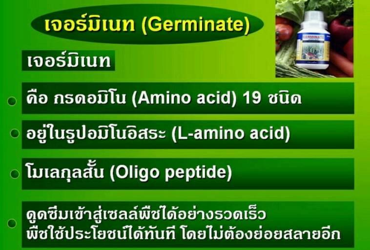เจอร์มิเนท ปุ๋ยกิฟฟารีน สารสกัดชีวภาพ 100%