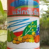 แม็กนีเซีย กิฟฟารีน ผลิตภัณฑ์เพื่อสร้างสีเขียว