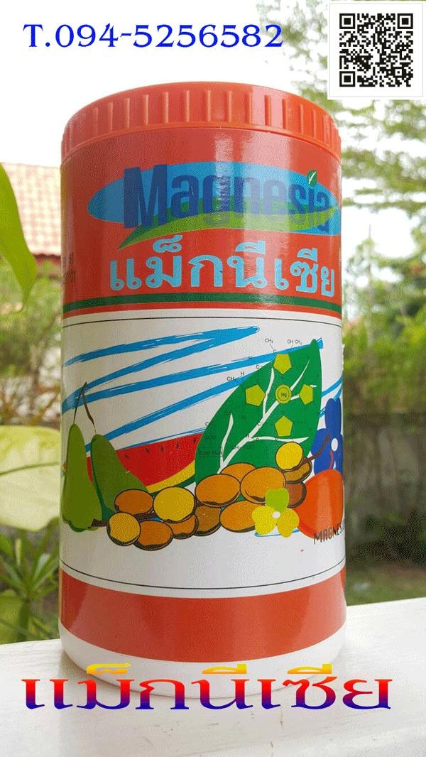 ปุ๋ย,ธาตุอาหารรอง-เสริม,ปุ๋ยกิฟฟารีน,ปุ๋ยลดต้นทุนเพิ่มผลผลิต,ผลิตภัณฑ์การเกษตรยุคใหม่,ผลิตภัณฑ์เพื่อสร้างสีเขียว,แม็กนีเซีย กิฟฟารีน,แม็กนีเซี่ยม